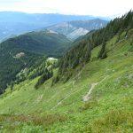 sauk mountain june wildflower hiking tour trail