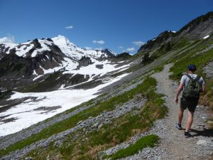 mt baker summer guided tour - chain lakes trail