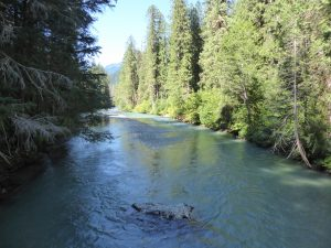 north cascades national park day tour - thunder creek