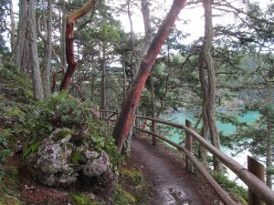 "anacortes ""wild side"" eco tour - bowman bay trail"