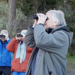 Skagit River Eagle Festival Tour birdwatchers