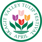 skagit valley tulips tour - festival