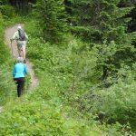 sauk mountain june wildflower hiking tour hikers