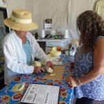 skagit valley Custom farm tour cheese farm
