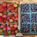 skagit valley Custom farm tour berries