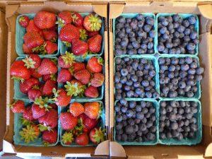 skagit farm-to-table tour berries