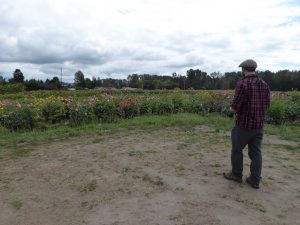 skagit farm-to-table tour flower farm