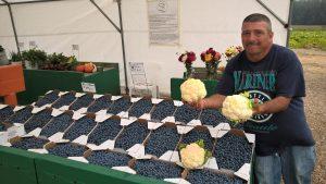 skagit farm-to-table tour fresh cut berries flowers veggies