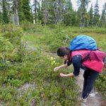 Mount Baker Summer Guided Day Hike jen berries