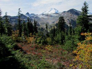 Mount Baker Fall Guided Hiking baker