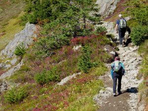 Mount Baker Fall Guided Hiking hikers