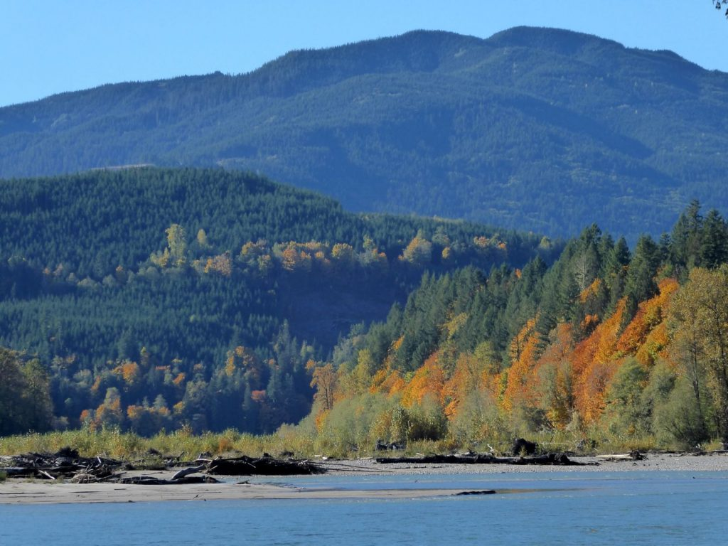 North Cascades Fall Photo Tours Fall along Skagit River