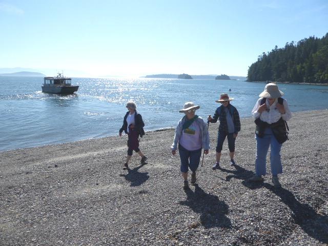 cypress island guided hike island express charters