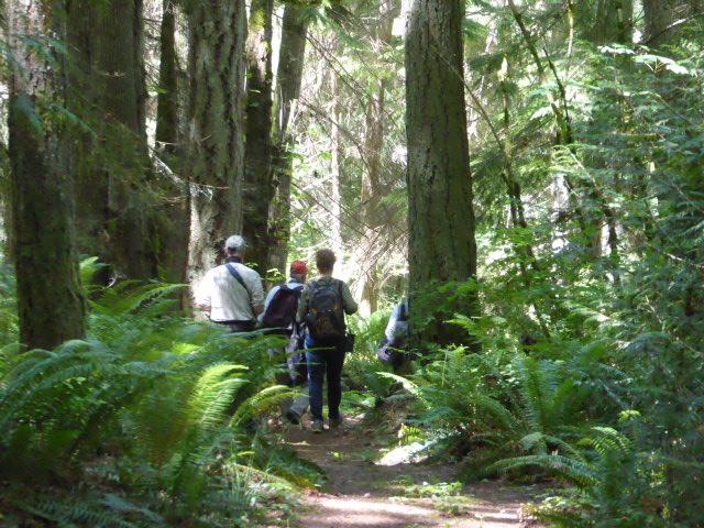 explore cypress vendovi islands guided hiking tours