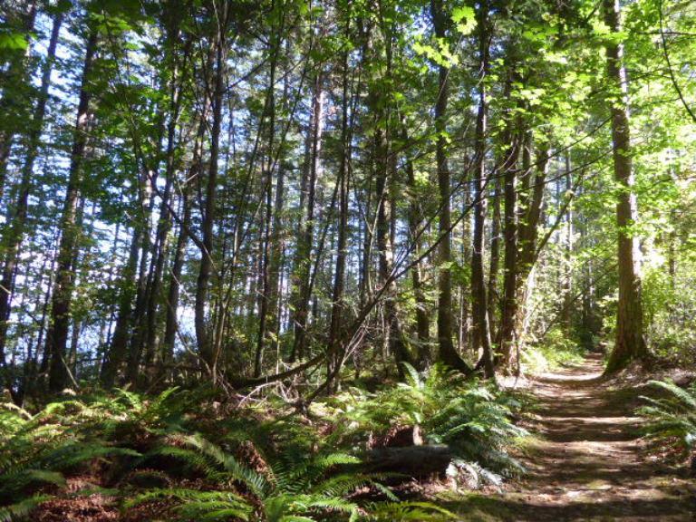 vendovi island preserve trail skagit guided adventures