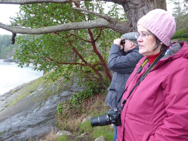 anacortes eco tour sightseeing