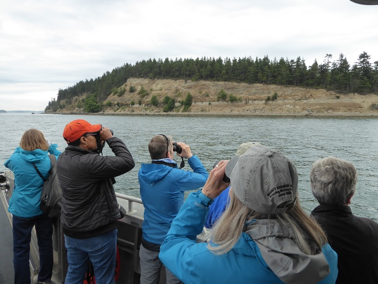 vendovi island birding cruise san juan islands