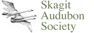skagit audubon society